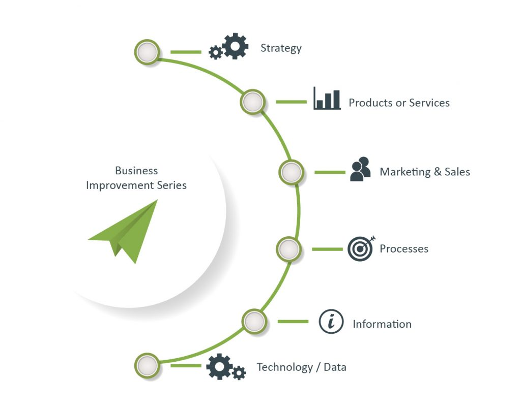 Business improvement - Strategy - Product and services - MArketing and Sales - Process and Operations - Information - Technology / Data
